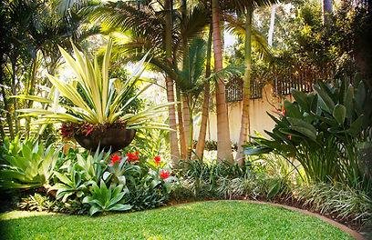 beautiful-tropical-landscape-design-trop