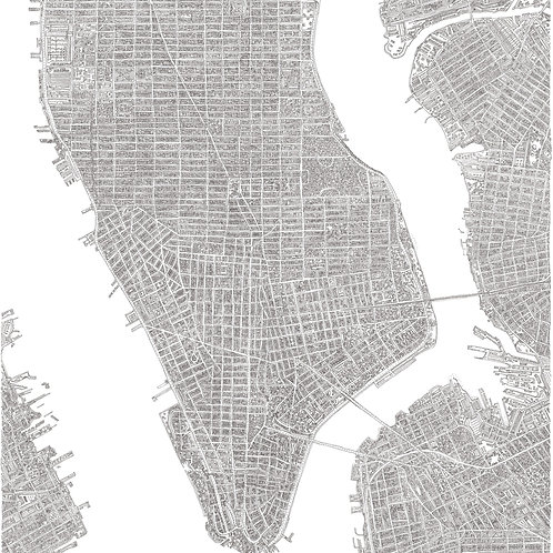 The New York Map