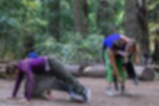 Contact dance, redwood grove, wilderness, adventure