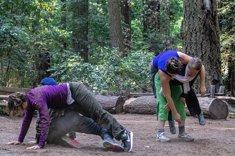 Contact dance, redwood grove, wilderness, adventure