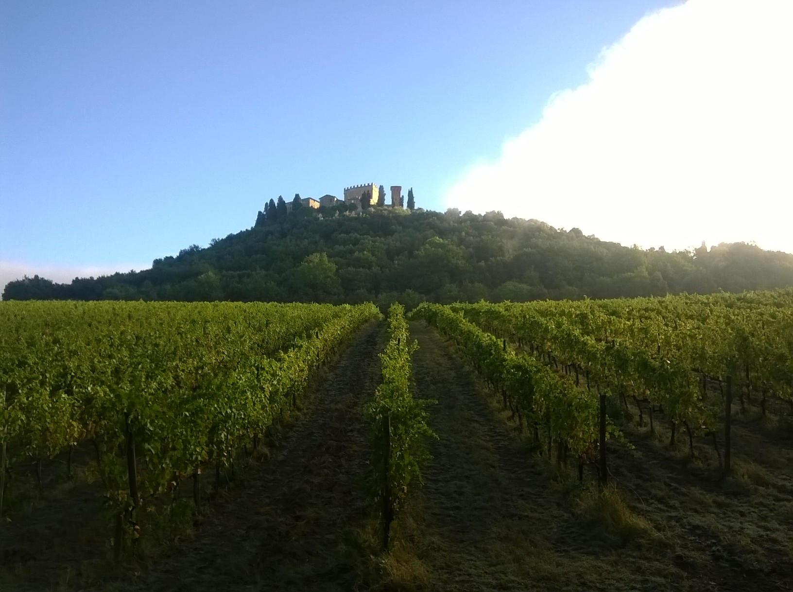 vigna vecchia castello