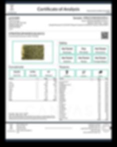 1901CVS0103.0311 - gr_nlabb - STRATOS SP
