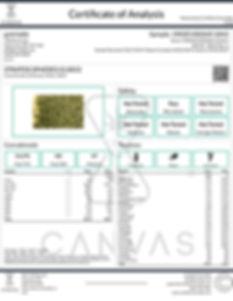 GLS012.jpg