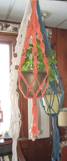 Multiple Macrame Plant Hangers In Different Colors