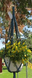 Large plant hangers