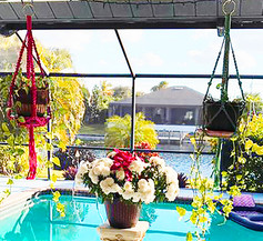 Macrame Plant Hangers By The Pool