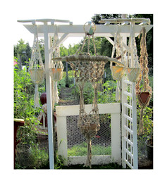 Garden trellis setting