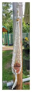 4 Star Plant Hanger