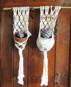 Succulent Plant Hangers With Plants