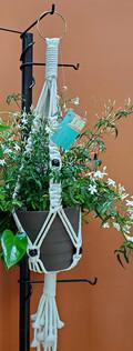Mid Sized Macrame Plant Holder