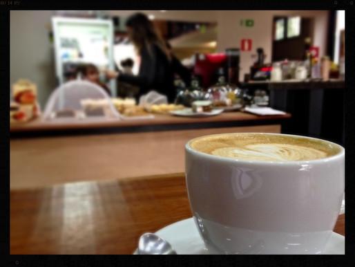 Terra Café: onde trabalhar é muito mais gostoso...
