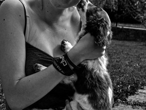 OAITH Report: Pet Safety and Women