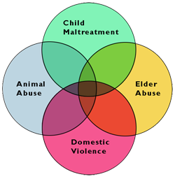 """The """"link"""" among four types of family violence"""