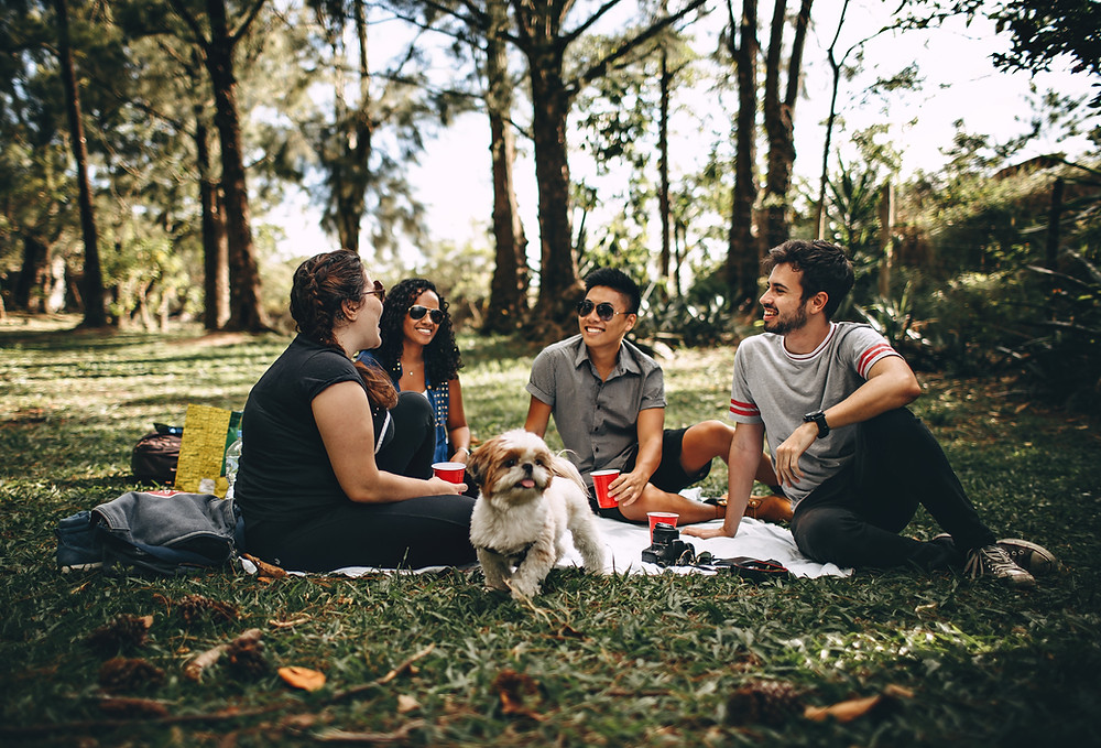 Group of smiling people and a dog sitting in a field of grass