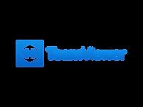 team-viewer-logo.png