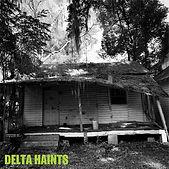 Delta Haints 7%22 Cover_JPG.JPG