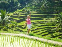 Les_rizières_en_étage_de_Bali.jpg
