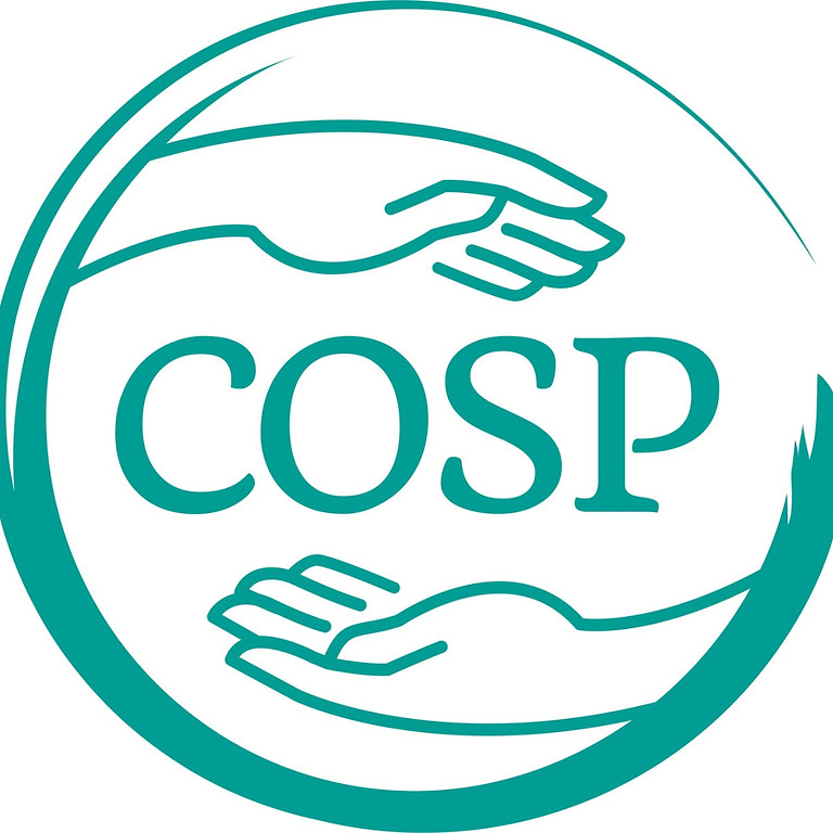 Circle of Security Parenting  (COS-P)