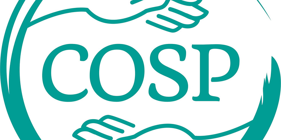 Circle of Security Parenting  (COSP)