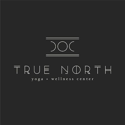 True North   Brand Identity