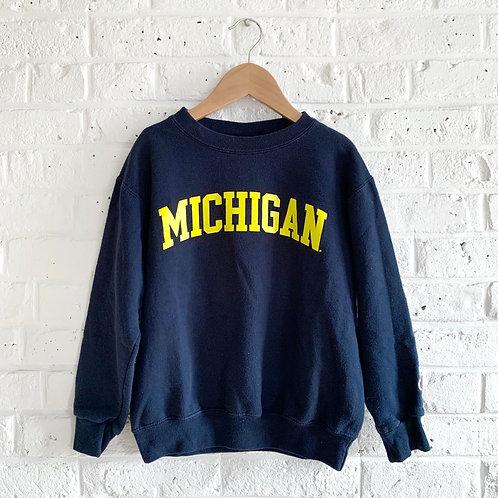 Champion Brand Michigan Pullover