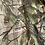 Thumbnail: Realtree Onesie