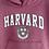 Thumbnail: Harvard Hoodie