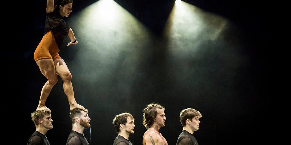 Circus Amidst COVID: An International Factual Update