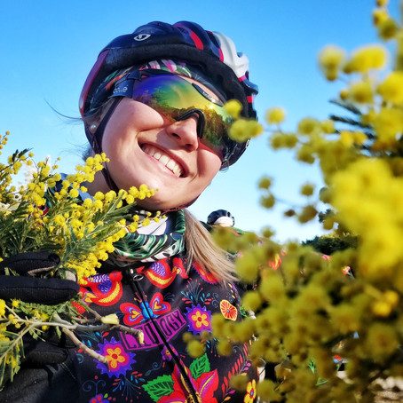 The Route of Mimosa Road Cycling Tour