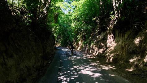 Kazimierz Dolny cycling explorer