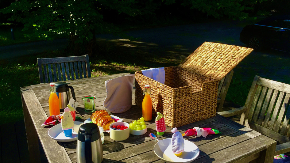 Breakfast basket in the nature