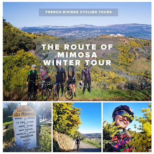 Mimosa Route.jpeg