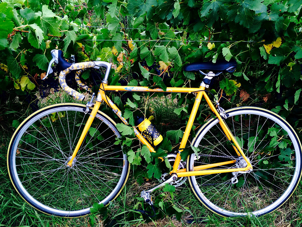 Cobra - my favorite (and first) yellow road bike of all time