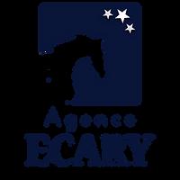 ECARY_logo court - bleu.png