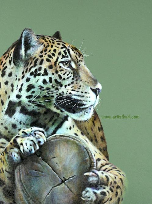 SALE Distraction Jaguar signed, mounted prints