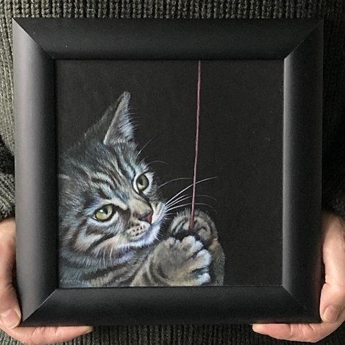 Bengal KittyCat kitten