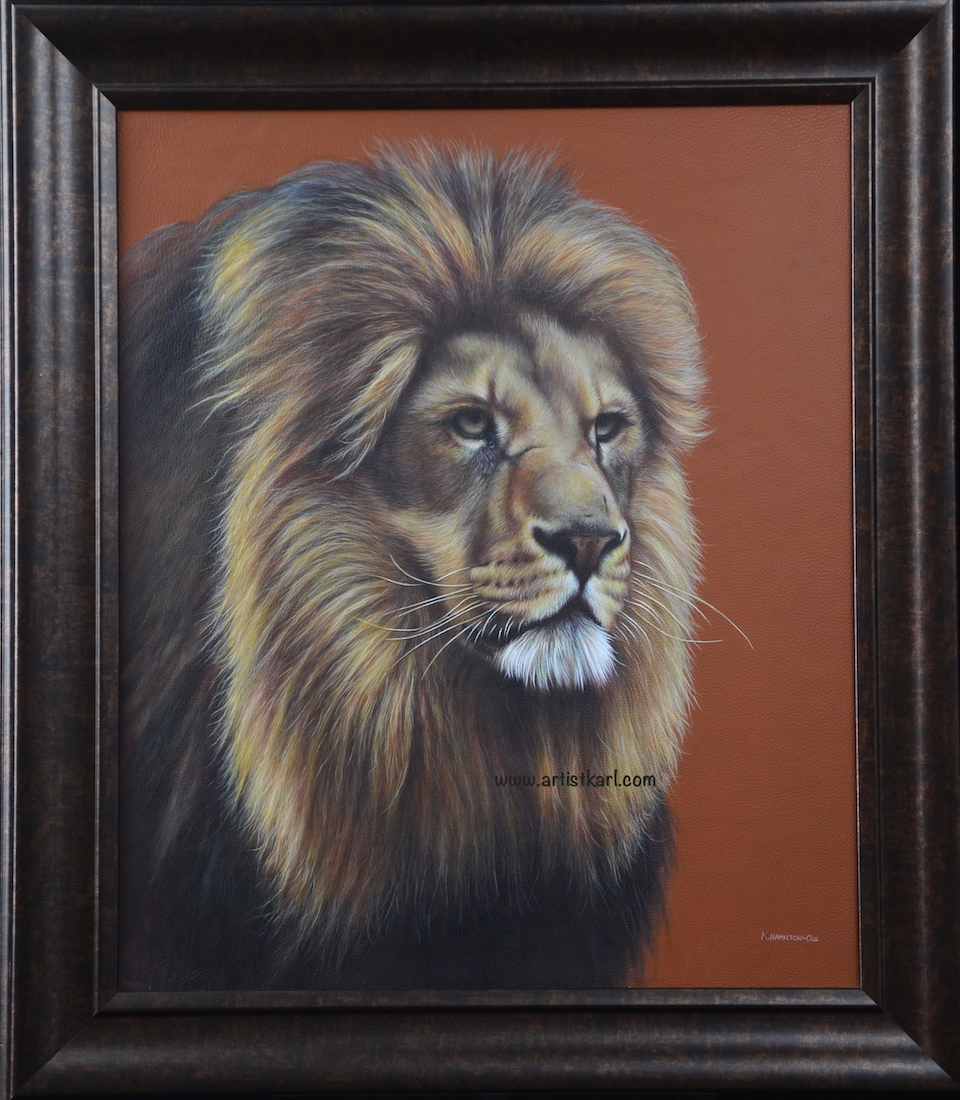 Majestic King - Lindy's Lion