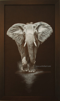 Full Power - elephant