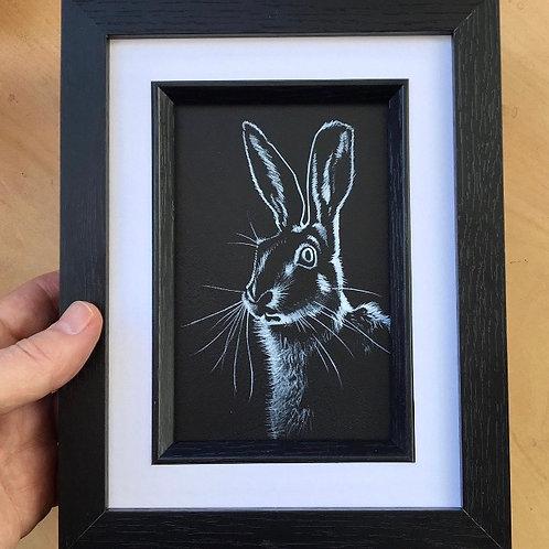 Hare Silhouette