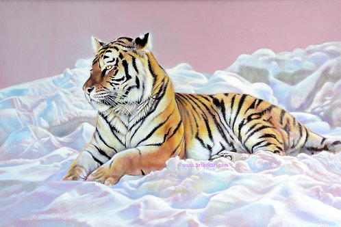 Chilling - tiger in the snow
