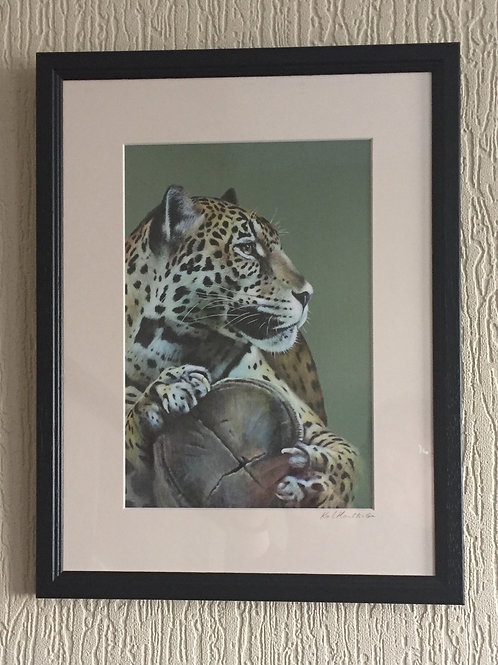 Distraction Jaguar - signed, mounted, framed print