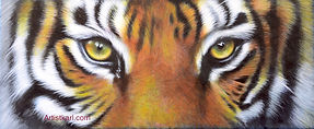 Tiger's eyes artwork leather