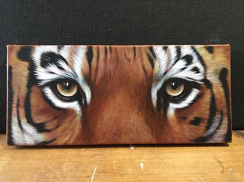 Tiger eyes - large