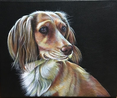 Amber dog pet portrait spaniel leather portraiture favourite animal custom commission
