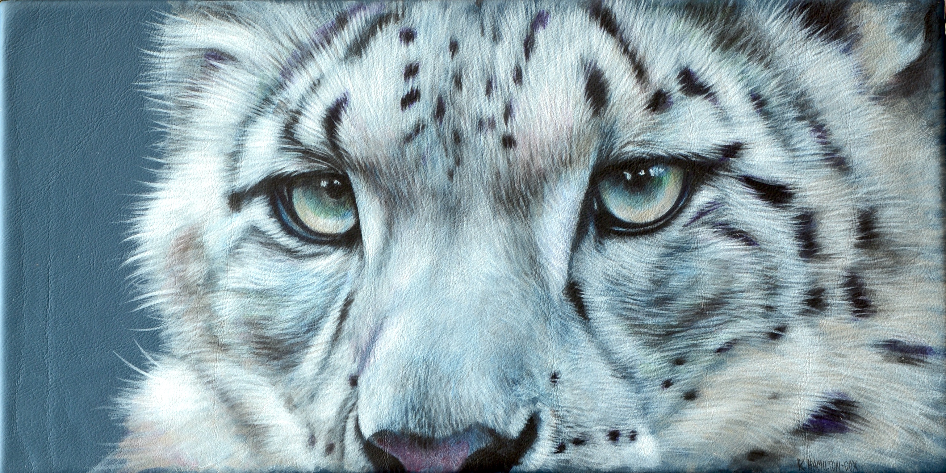 Cats Eyes Series - snow leopard