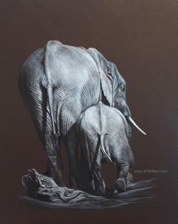 Going Home  - elephants