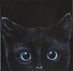 KittyCat Series