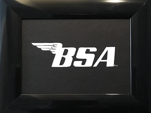 BSA bike logo