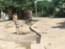 Waterharvest.jpg