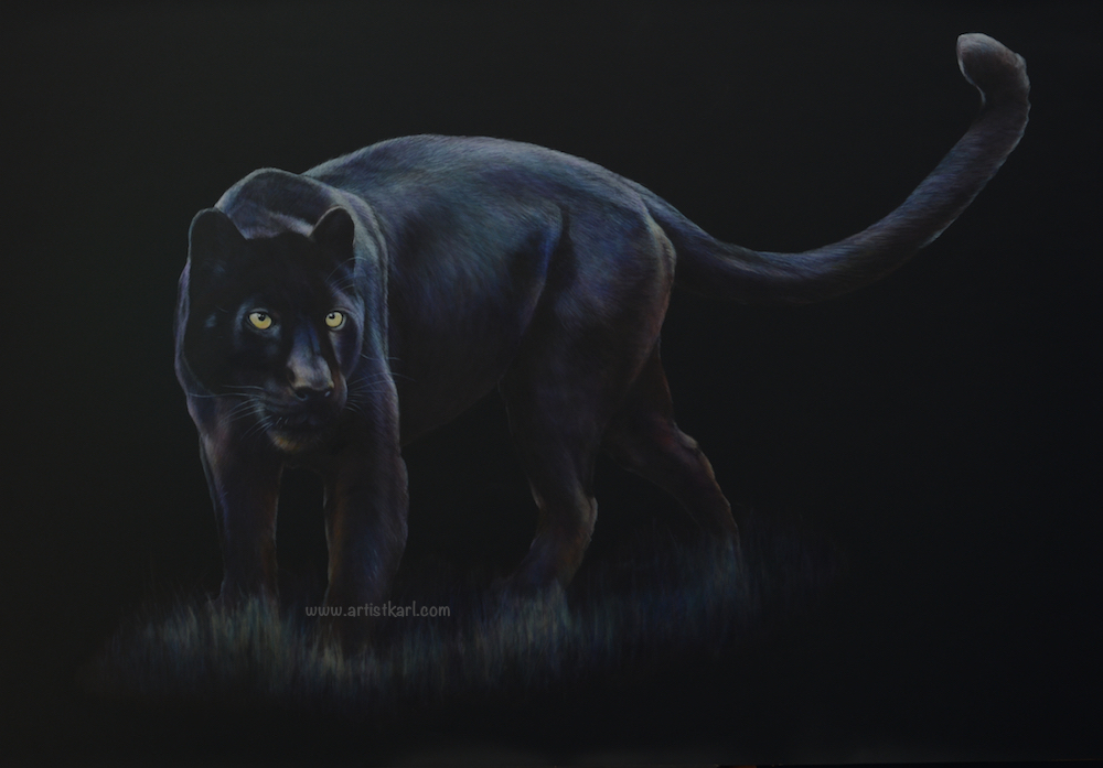Night Hunter - black leopard